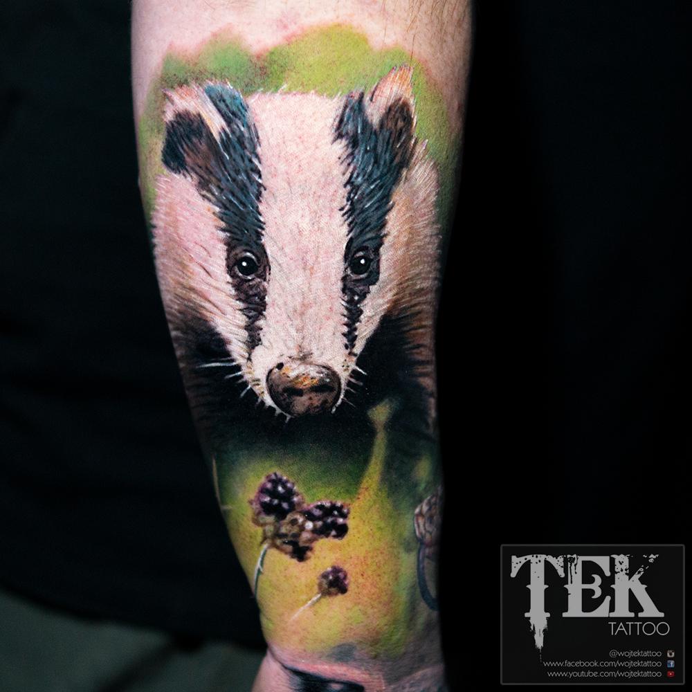 Colour badger tattoo