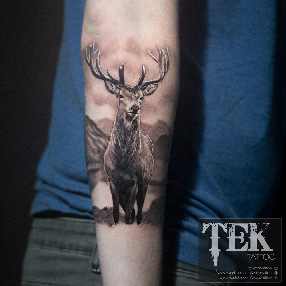 Black and grey stag